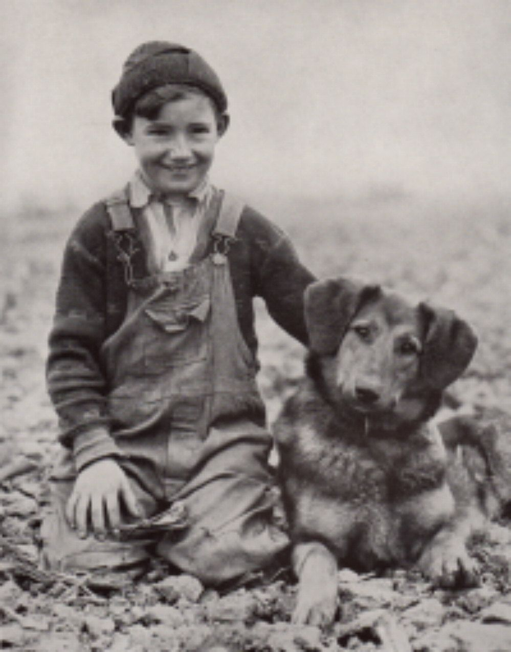 1930s photo boy and dog shepherd dog black and white photo