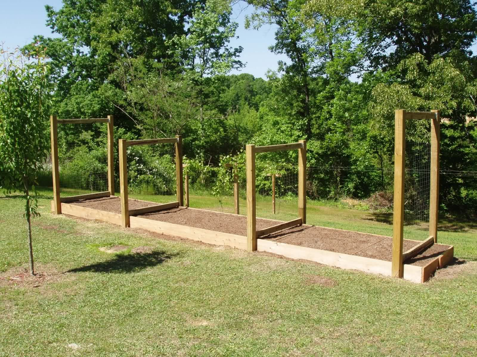 Garden Trellis Ideas trellises serve an important function in the garden they can be completely utilitarian or they Vegetable Garden Trellis Ideas Trellis Ideas Vegetable Garden