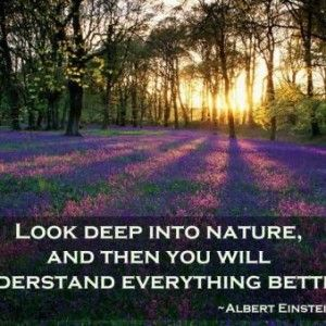 Inspirational Nature Quotes and Sayings