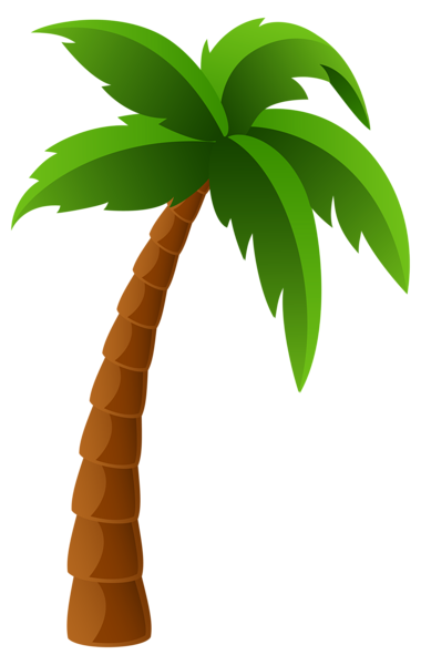 palm tree png image clipart graphics pinterest rh pinterest com palm tree cartoon pic palm tree cartoon images