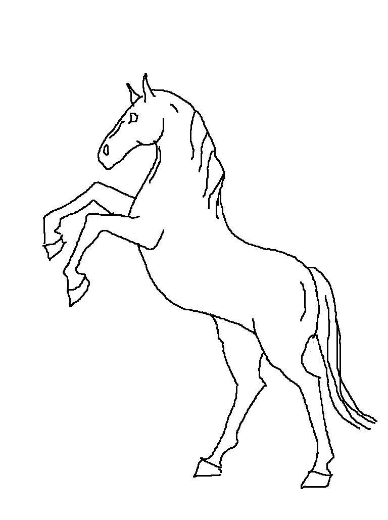 Easy+to+draw+horses  Rearing Horse Line Drawing By Jesuslover488448