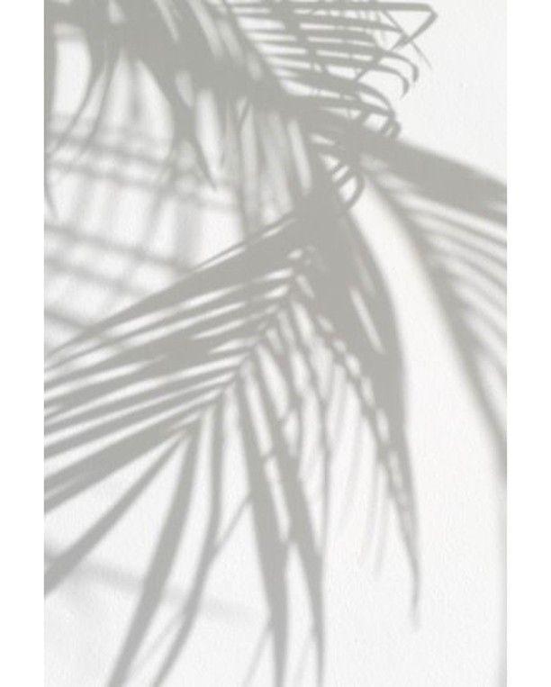 Summervibes #palmtrees #powjewellery
