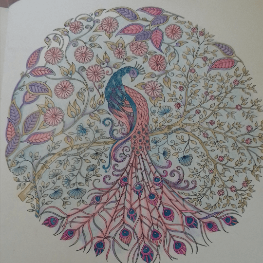 Take A Peek At This Great Artwork On Johanna Basfords Colouring Gallery Basford Secret GardenColored