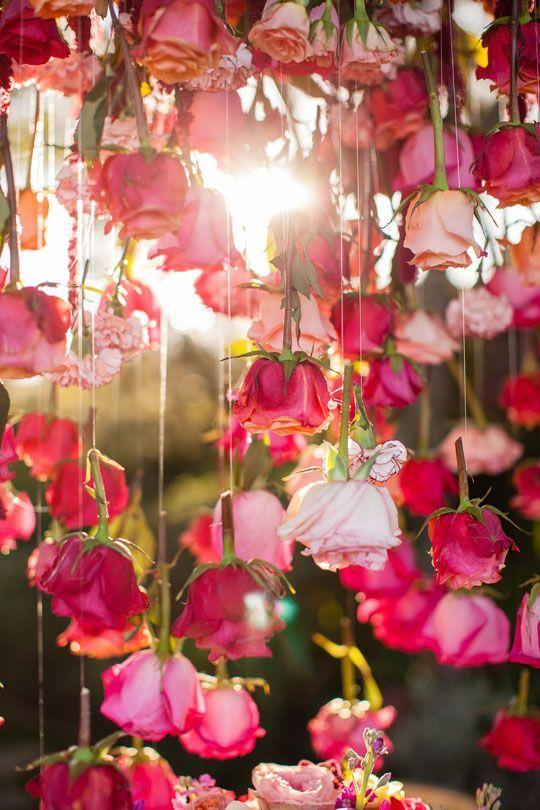 Roses in the air! #rosen #garten #rot #rosa #blüten #duft Rose - rose aus stein deko