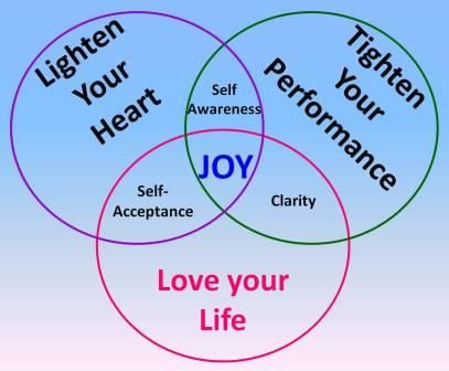 life coach model - i will be changing some words in this ... venn diagram of synoptic gospel