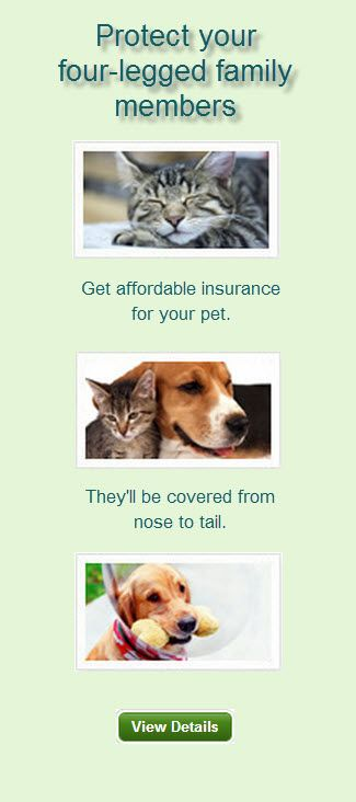 Did you know that USAA now offers pet insurance? Find out