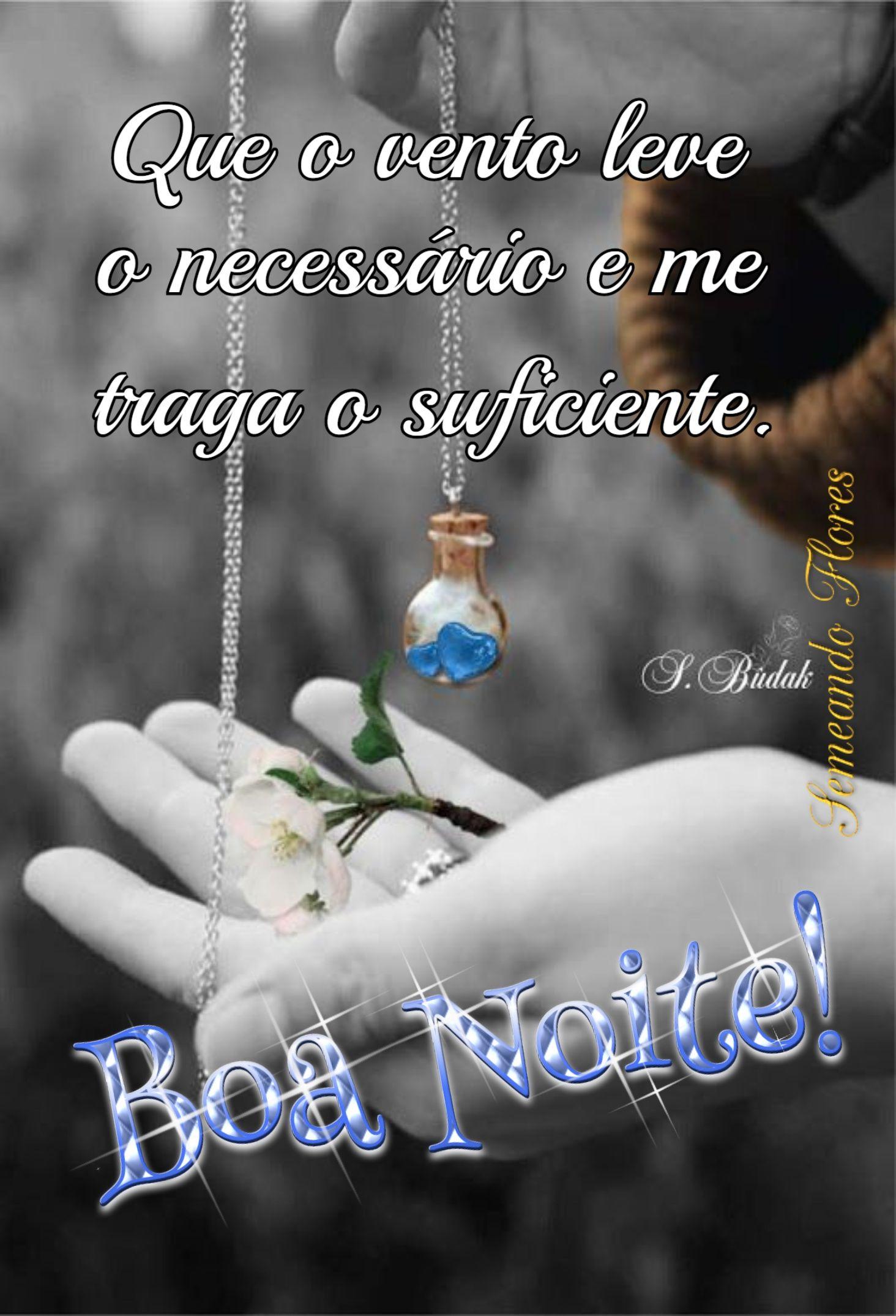 Pin De Roberta Lopes Em Bom Dia Com Imagens Boa Noite Especial