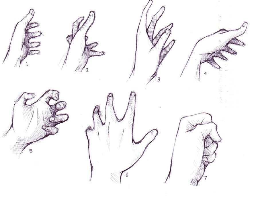 Hand Reference Google Search Hand Drawing Reference Human Drawing Reference Drawing Reference