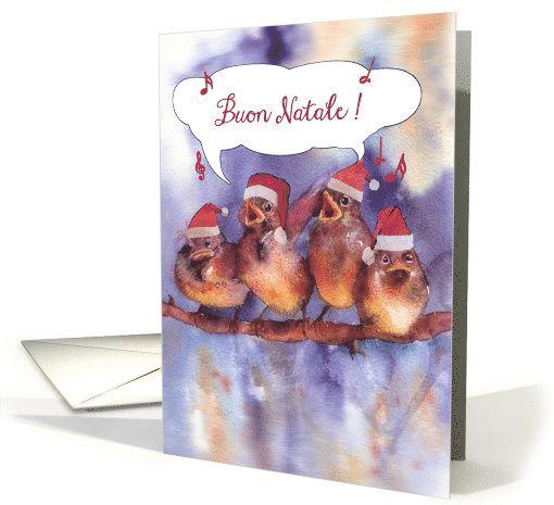 Buon natale merry christmas in italian singing sparrows card buon natale merry christmas in italian singing sparrows card m4hsunfo