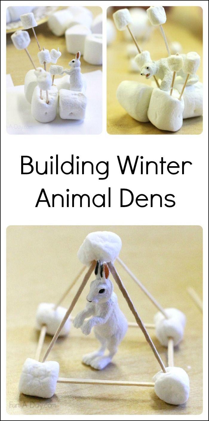 Engineering Project For Kids Dens For Winter Animals Winter Animals Preschool Arctic Animals Winter Preschool [ 1411 x 700 Pixel ]