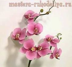 Master class on ceramic floral design: Orchid from Polymer clay
