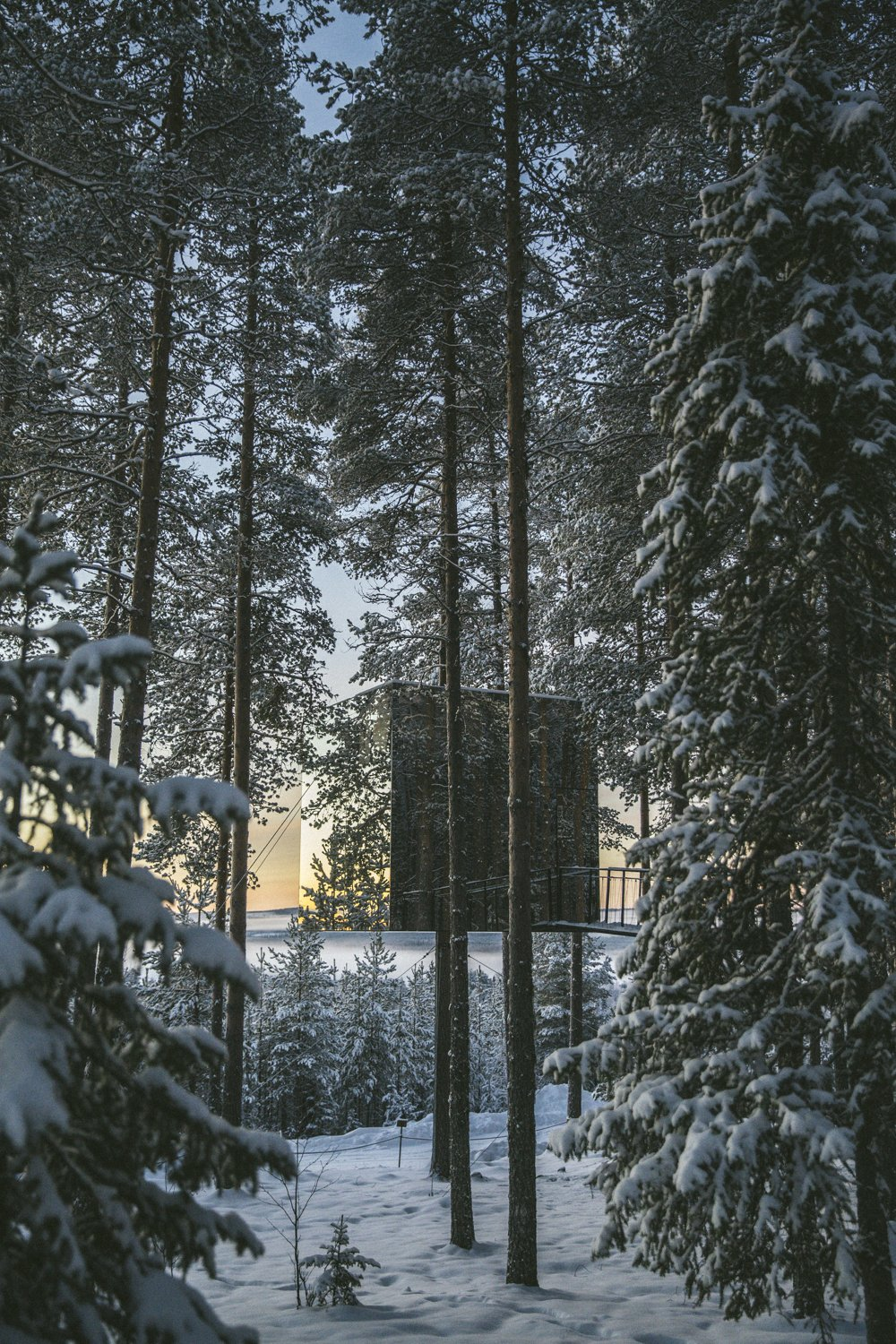 Photo of Exploring the Treehotel, Sweden – The Londoner