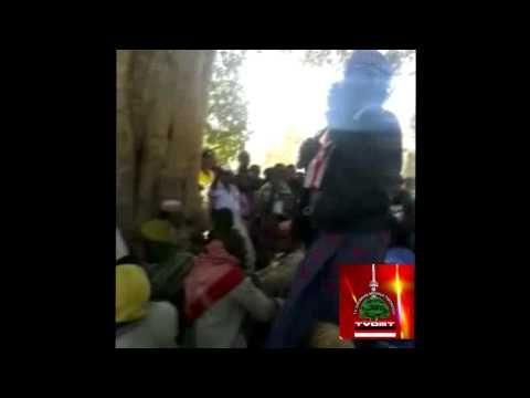 TVOMT Sagantaa Aadaa Fii Artii  Oromoo (Odaa Bultum