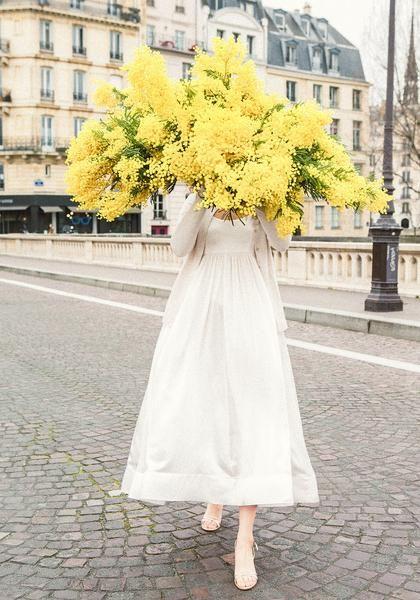 Late For Love - Mimosa Ile St Louis Paris from series Le Jeune Fille En Fleur