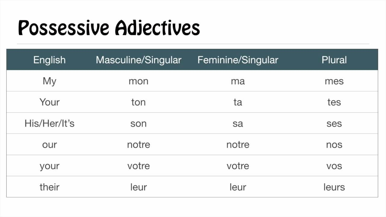 Image Result For Adjective Agreement French French Pinterest