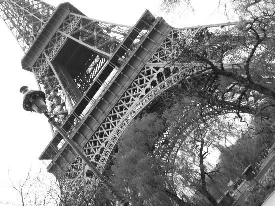PARIS! Steeped in history and art  Gorgeous scenery