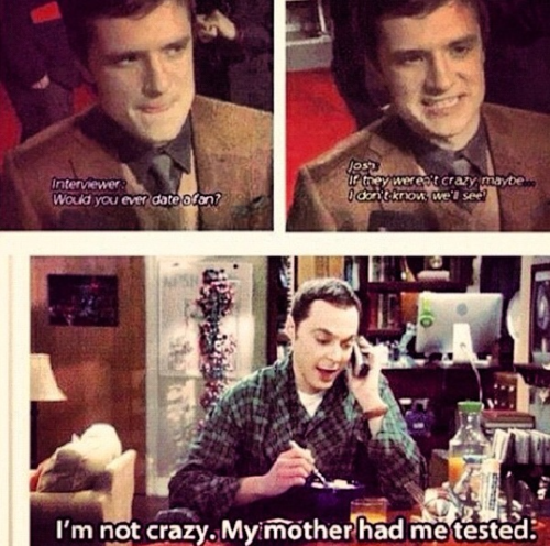 hunger games+big bang theory= best thing ever; im not crazy :3