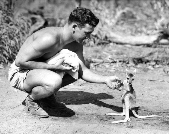 G'day kangaroo mate
