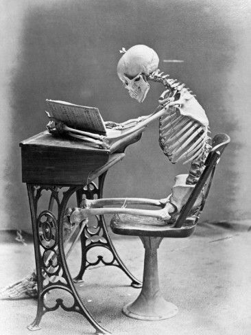Ha, this'll be how I'll probably go - get all immersed in a book and forget to eat. :-) (Skeleton Reading at Desk Photographic Print by Bettmann at AllPosters.com)