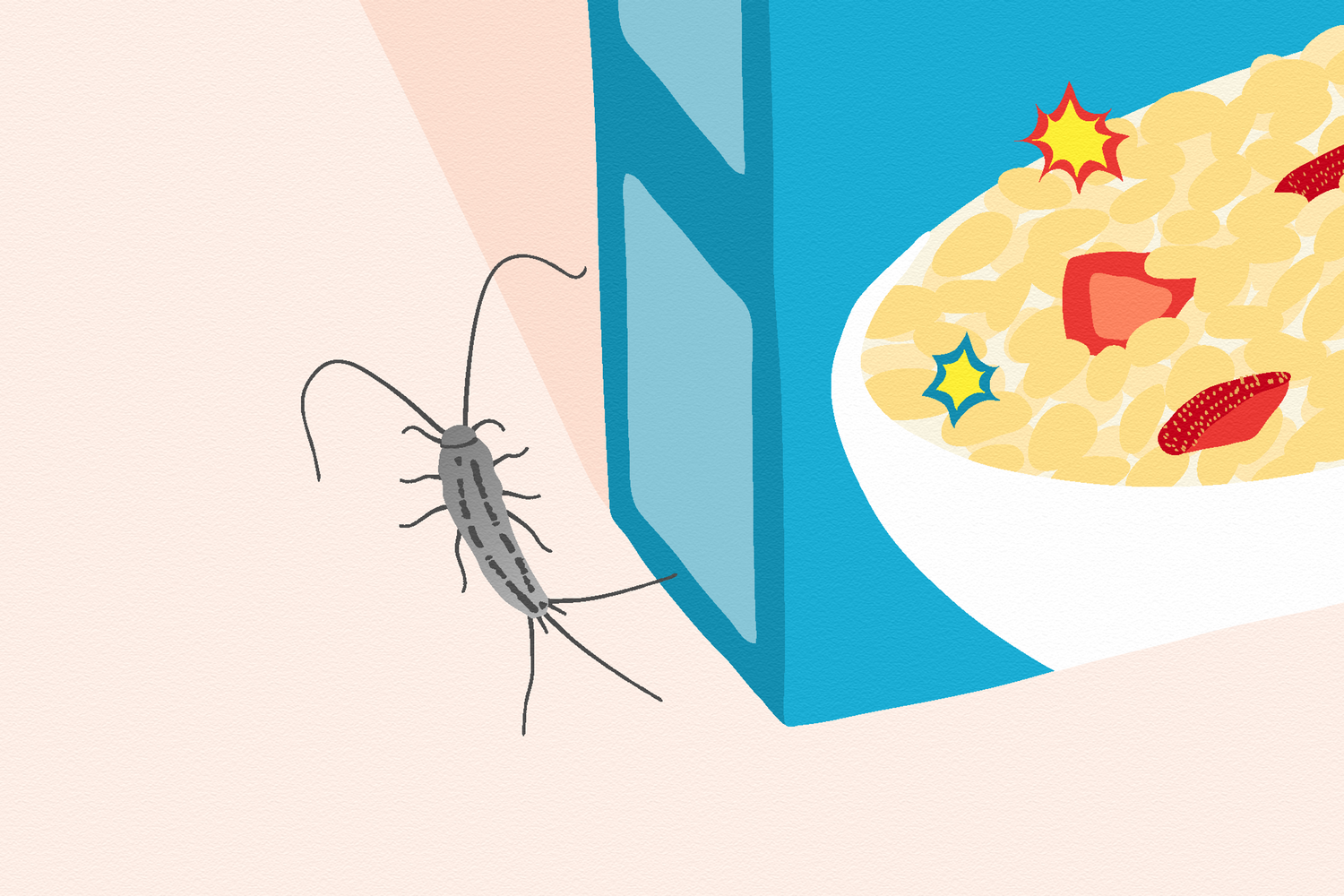 Silverfish How To Get Rid of Them & Prevent an