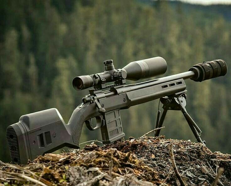 Boltaction Remington 700 Magpul With Suppressor And Custom Magazine