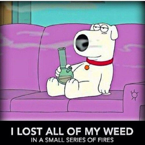 I lost all of my weed in a small series of fires. #420 # ...