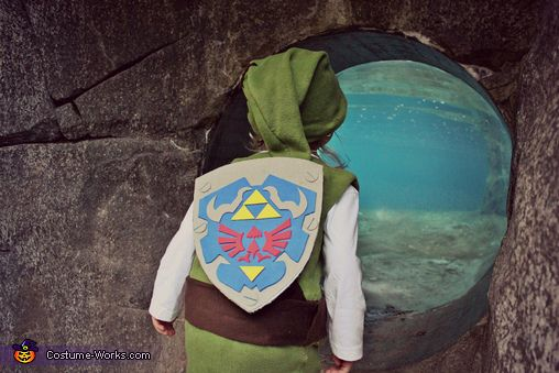 This homemade costume for babies entered our 2013 Halloween Costume Contest. & Link from The Legend of Zelda - Halloween Costume Contest at Costume ...