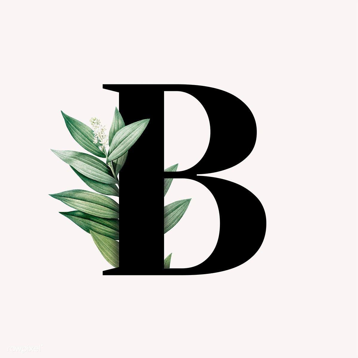 Download Premium Vector Of Botanical Capital Letter B Vector 584847 Letter B Lettering Alphabet Fonts B Letter Design
