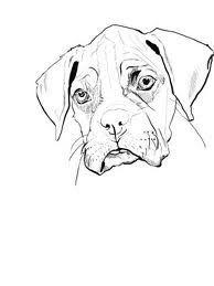 Desenhos Do Mapa Do Brasil Para Imprimir E Colorir Dog Coloring