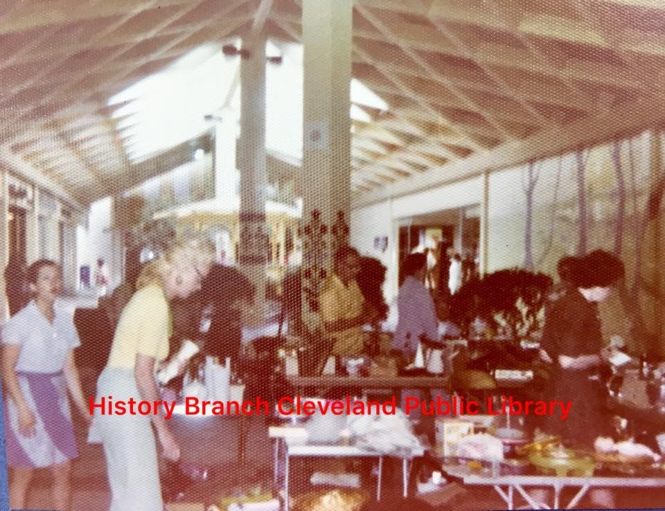 Inside The Village Mall From History Branch Bradley Cleveland Public Library Cleveland Tennessee Hometown Pride History