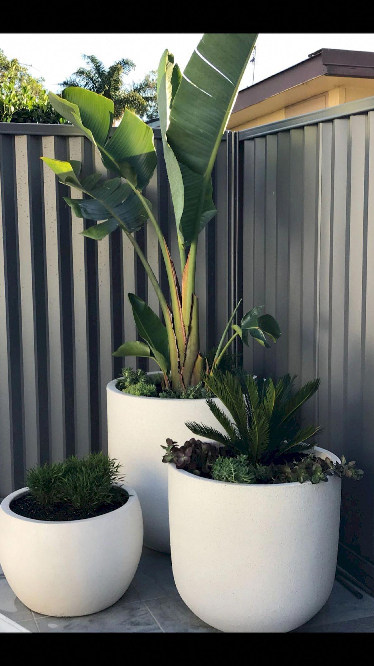 front garden design ideas australia #Gardendesignideas