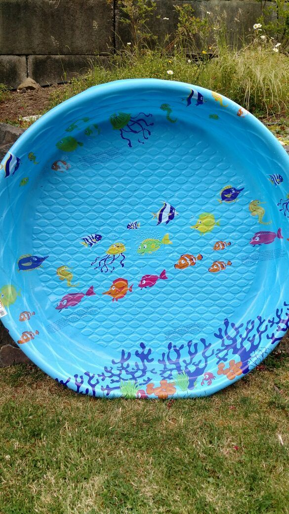 Free Hard Plastic Kiddie Pool New For Sale In Bellingham Wa