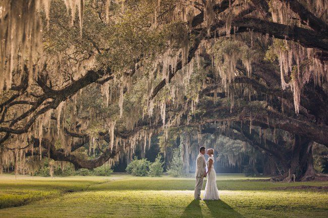 Magnolia Plantation and Gardens Wedding - Fab You Bliss