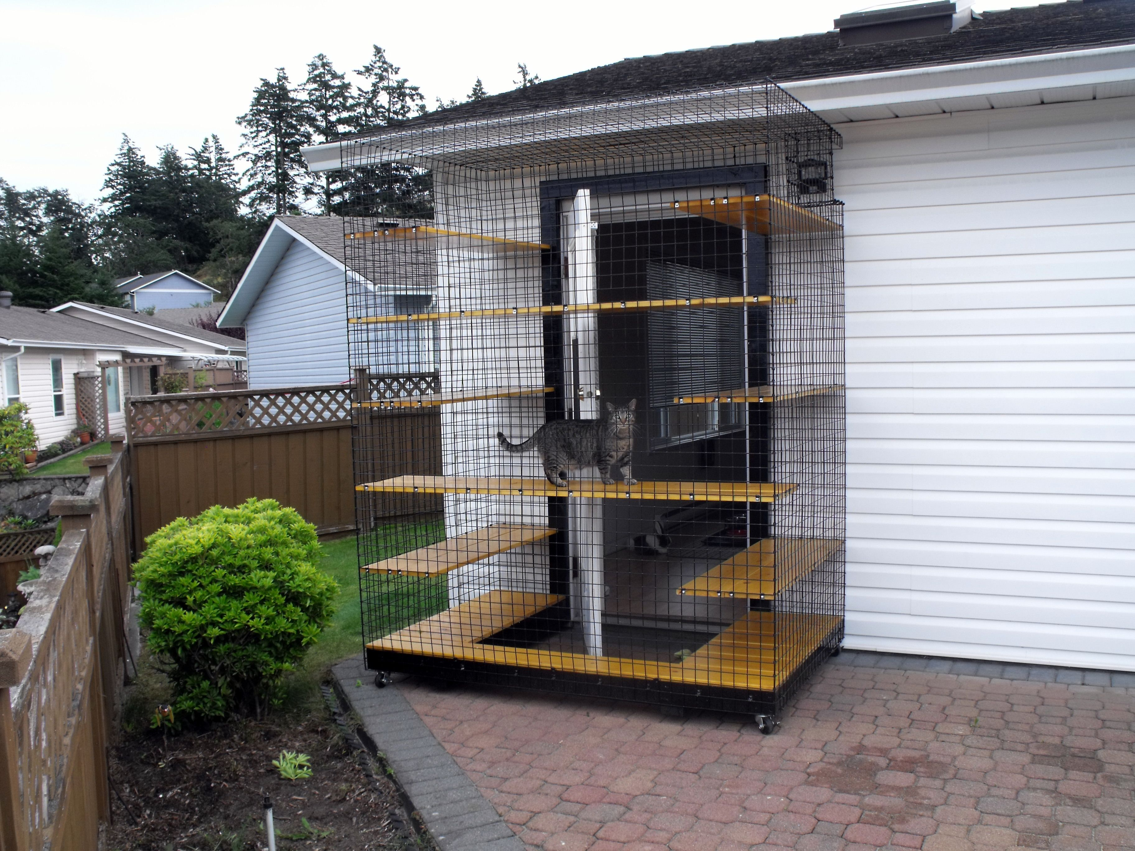 Outdoor Cat Enclosure On Wheels Beautiful World Living Environments  Www.abeautifulwor.