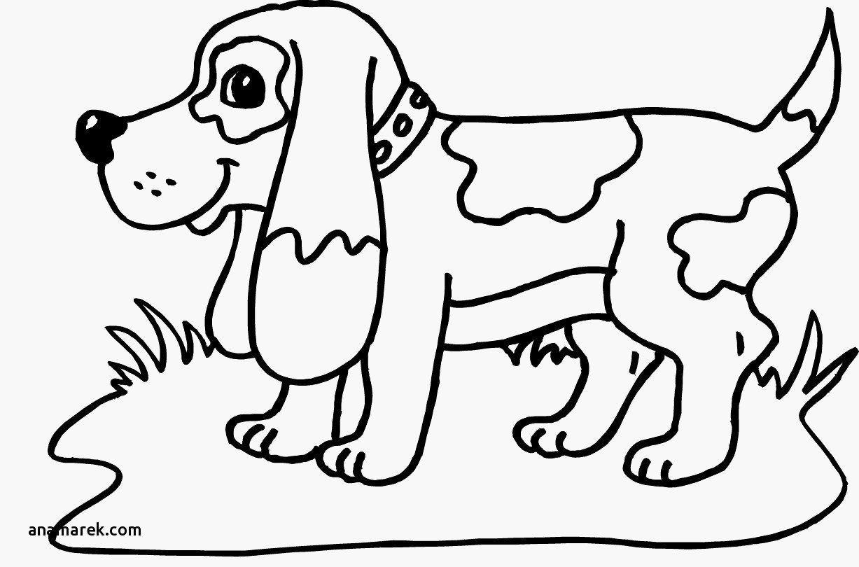 lustige hunde ausmalbilder  aiquruguay