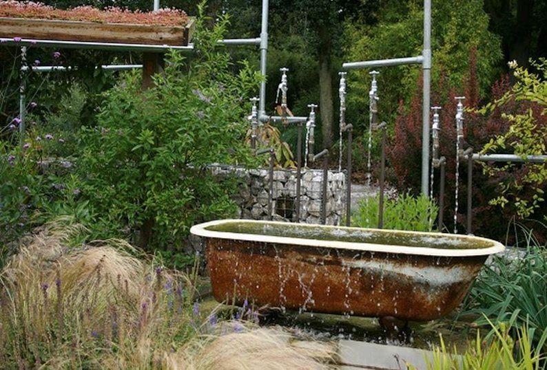 Продам садовые многолетники и кустарники + домашнее растение.