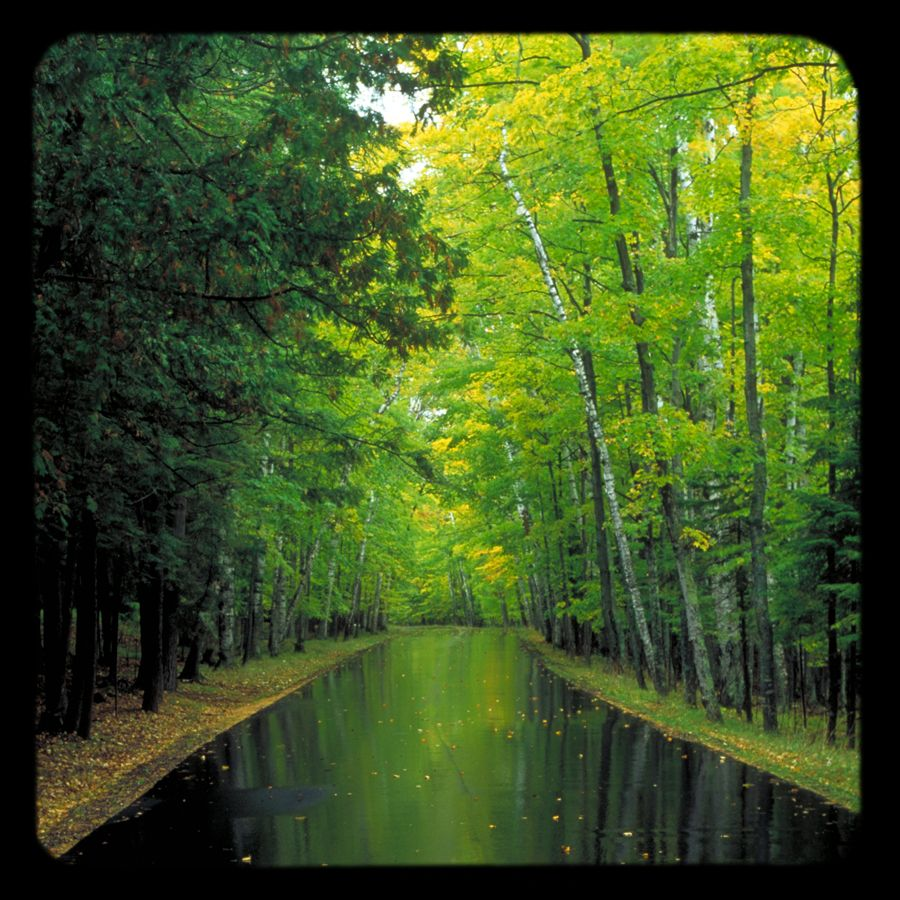 In the mirror of fall  Leaves surrender  To the tug of road  And urge of wind  I see your reflection  And colors true