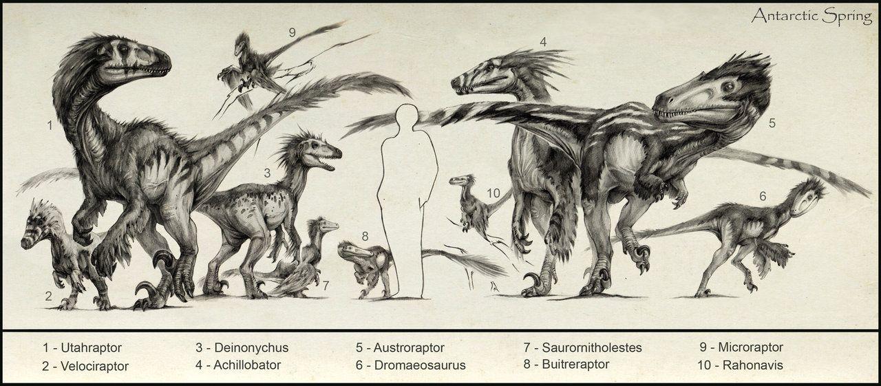 Dromaeosaur Sits Like A Boss Dinosaur Art Prehistoric Creatures