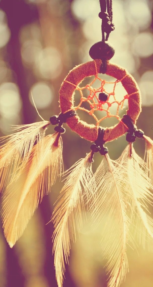 Dreamcatcher Feathers Closeup Iphone 6 Plus Hd Wallpaper In