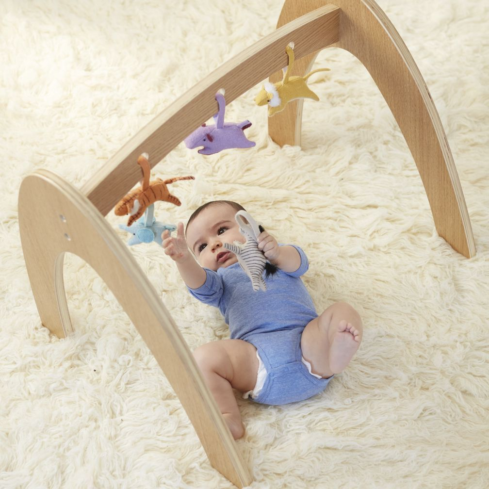 Wee Workout Baby Gym (Natural)   Baby activity gym, Play gym and Babies