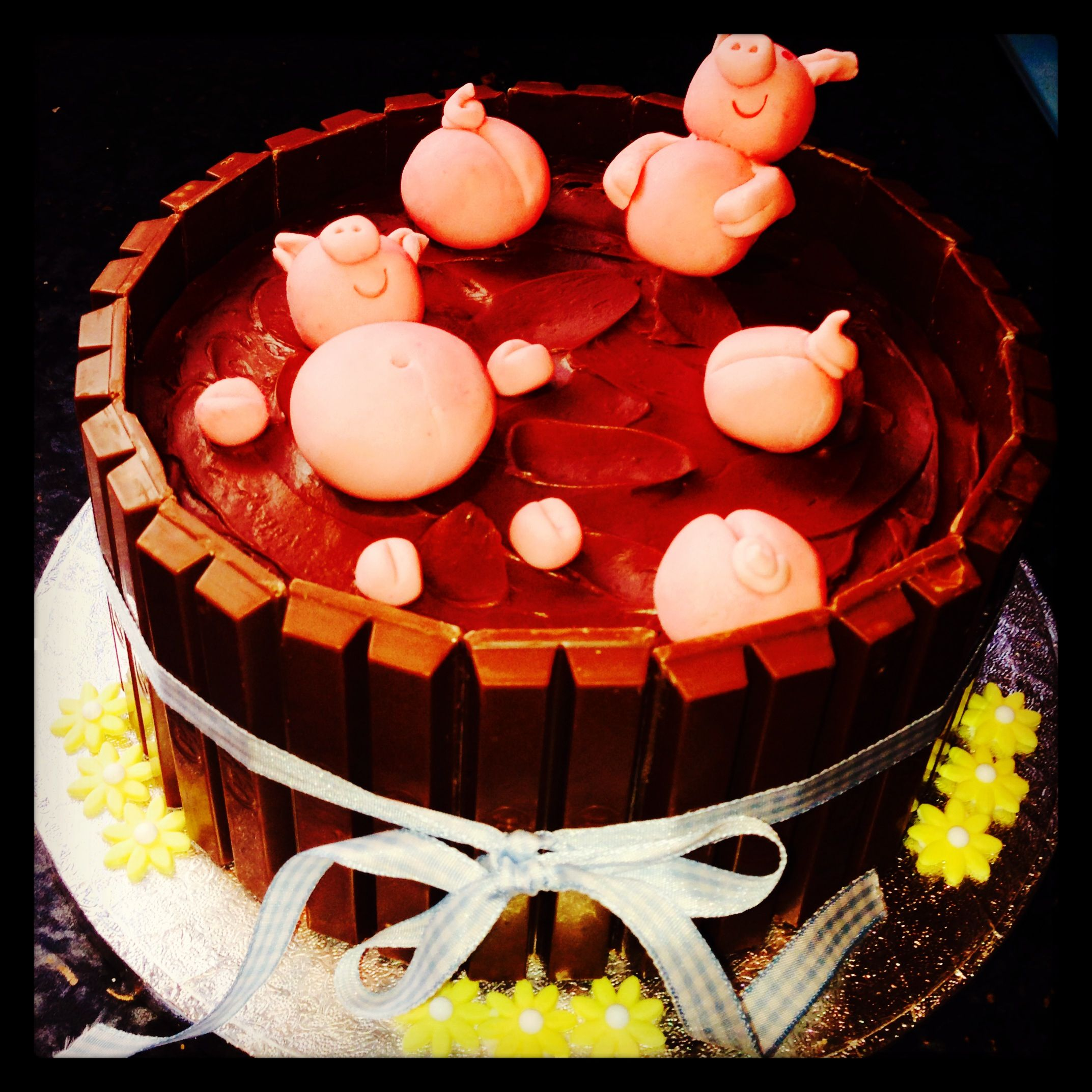 Pig mud bath cake | Cake decorating, Cake, Desserts