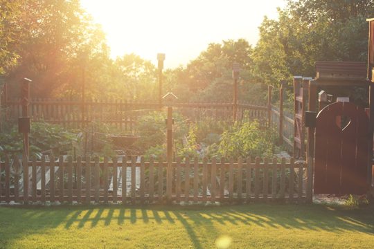 my favorite fence design for raised bed garden. with tall posts for deer fencing and birdhouses