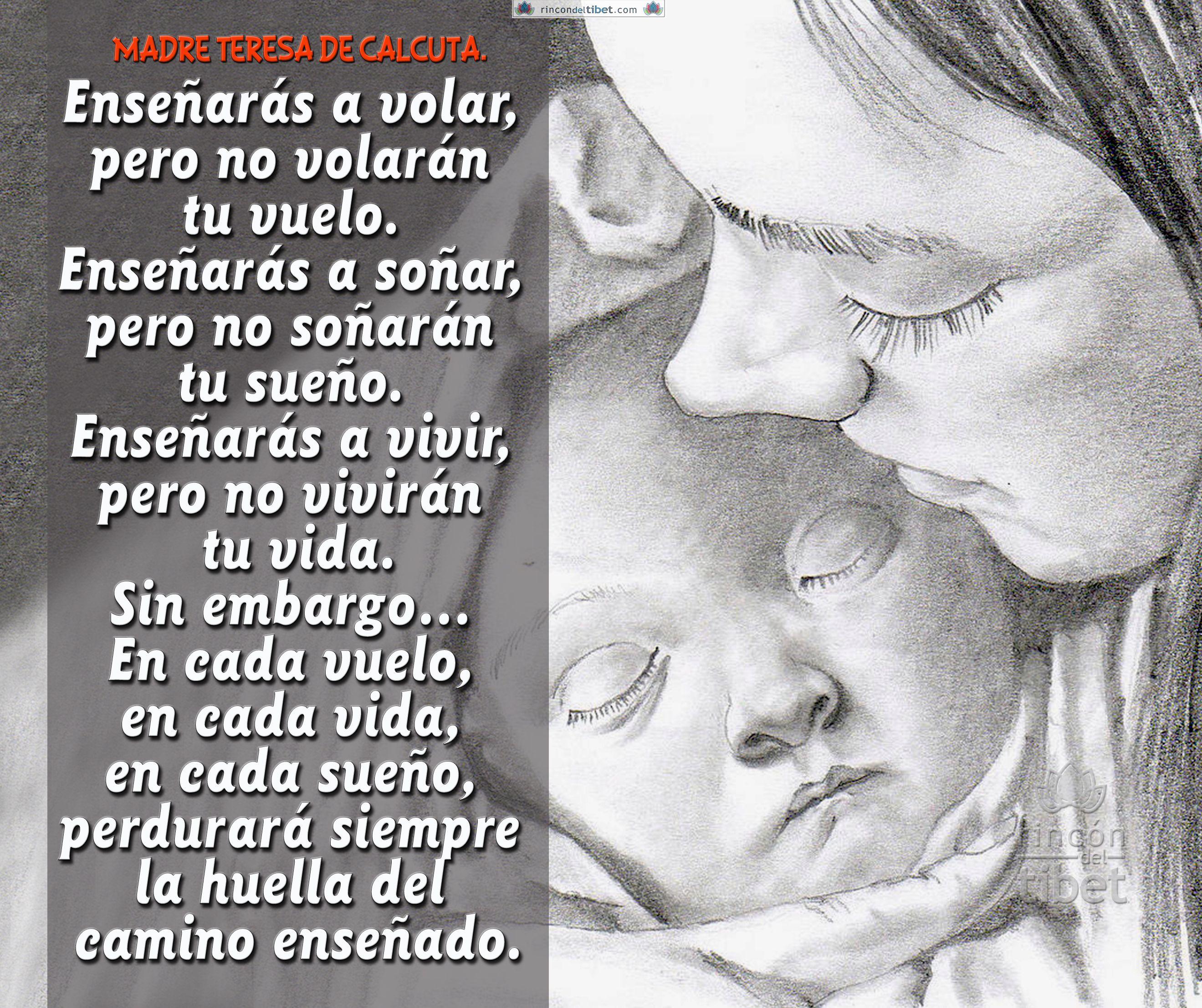 Madre Teresa De Calcuta Frases Y Citas Osho Humanity Quotes
