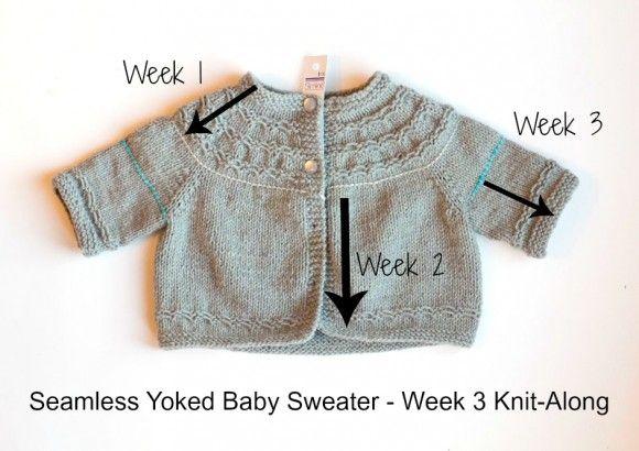 7486b7ca9f82 Seamless Yoked Baby Sweater Knit-along Week 3