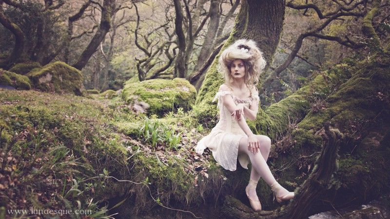 Lunaesque Creative Photography - The Faerie Path