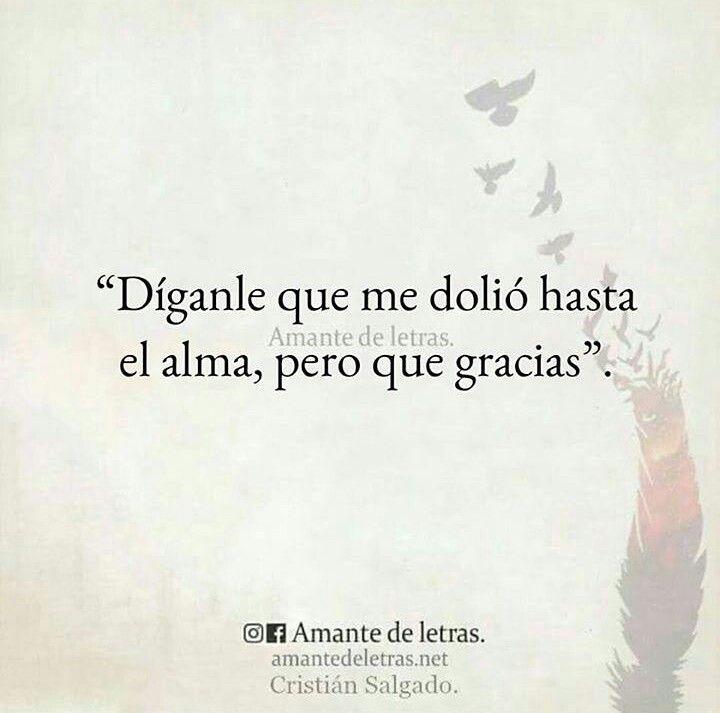 Pin de Carolina Rosales en frases :3 | Pinterest | Frases, Desamor y ...