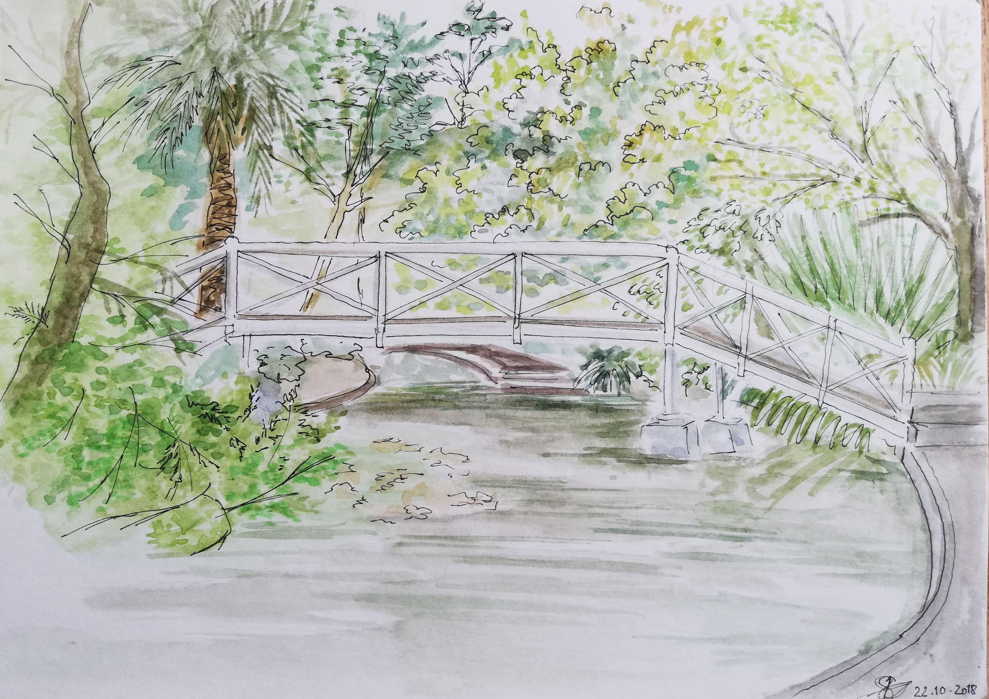 Aquarelle Details Encre Noire Dessin Original Jardin De Nelson