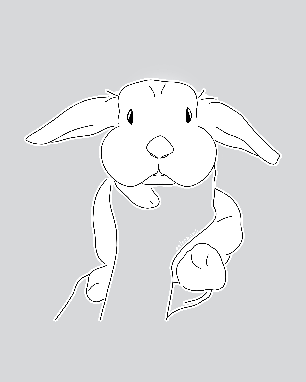 #bunny #bunnysofinstagram #bunnygram #igbunny #bunnyoftheday #bunnylove #hollandlop #bunnylover #bunnylovers #bunnyworld #hollandlopsofinstagram #lopbunny #lopsofinstagram #bunnyworldwide #baobaonation #markham #christmastree