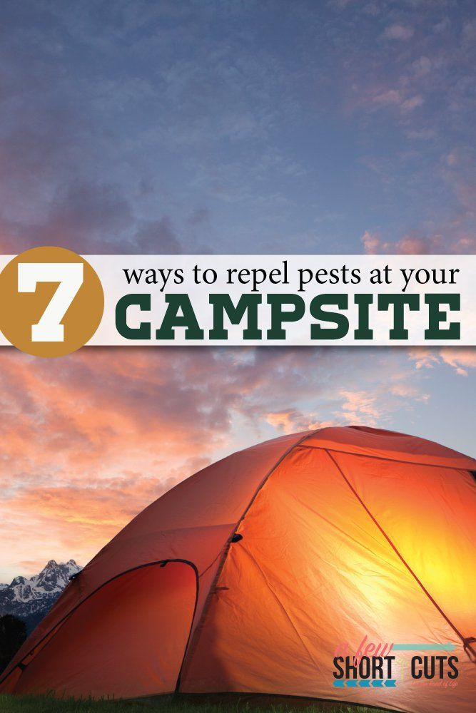 Are you ready to enjoy a pest free campsite? Give these 7 tips for a pest free campsite a try and see how simple it can be to protect your space.