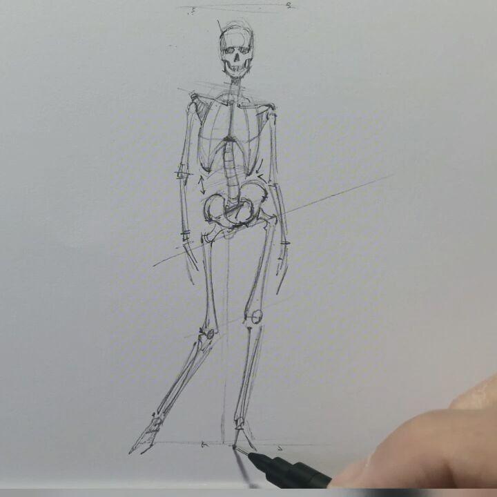 "16.7 mil Me gusta, 103 comentarios - FERHAT EDİZKAN (@edizkan) en Instagram: ""Figure drawing, Skeleton #anatomy #study #illustration #drawing #dessin #figuredrawing #sketch…"""